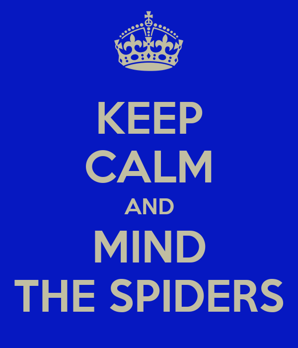 KEEP CALM AND MIND THE SPIDERS