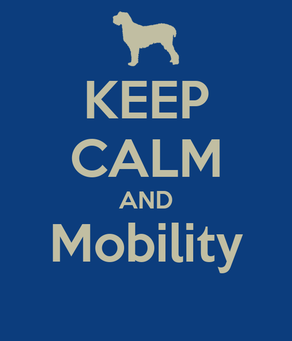 KEEP CALM AND Mobility