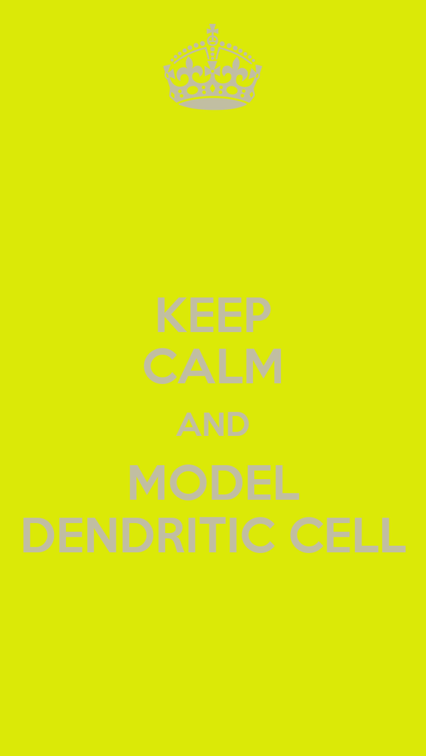 KEEP CALM AND MODEL DENDRITIC CELL