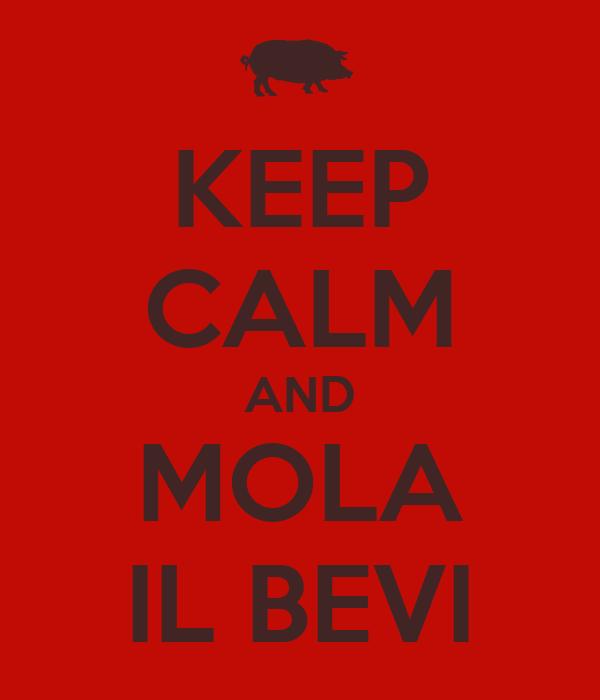 KEEP CALM AND MOLA IL BEVI