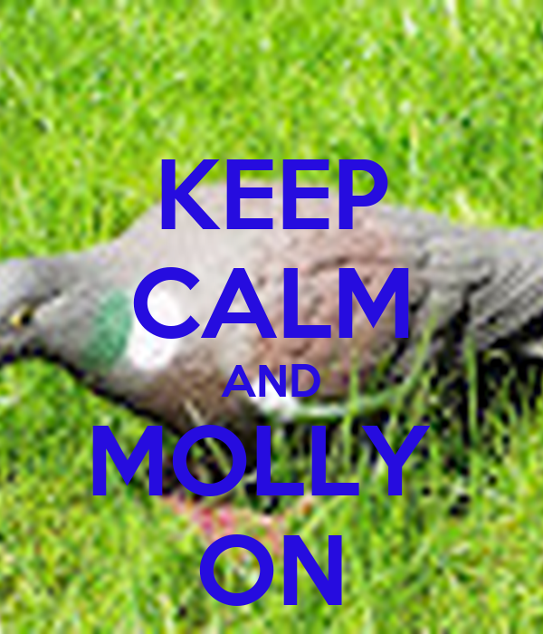 KEEP CALM AND MOLLY  ON