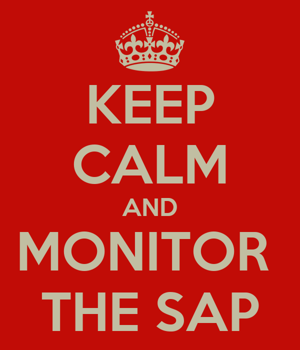 KEEP CALM AND MONITOR  THE SAP