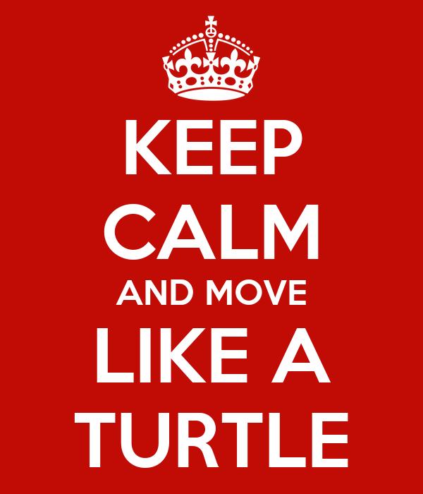 KEEP CALM AND MOVE LIKE A TURTLE