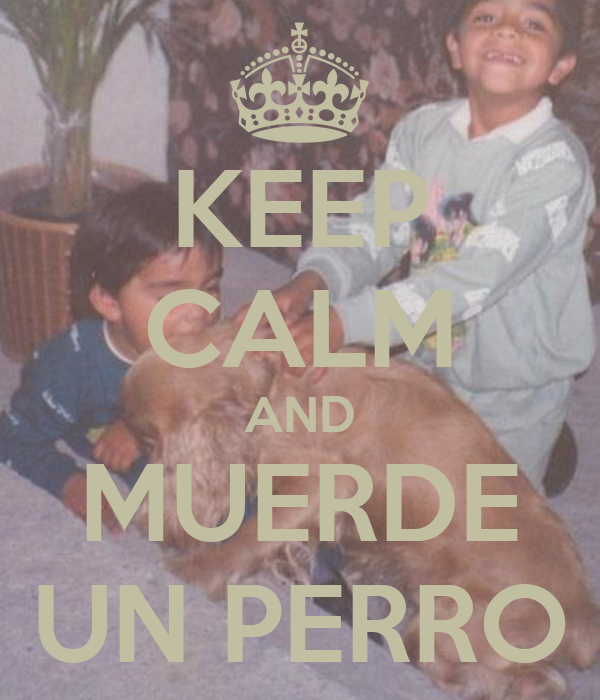 KEEP CALM AND MUERDE UN PERRO