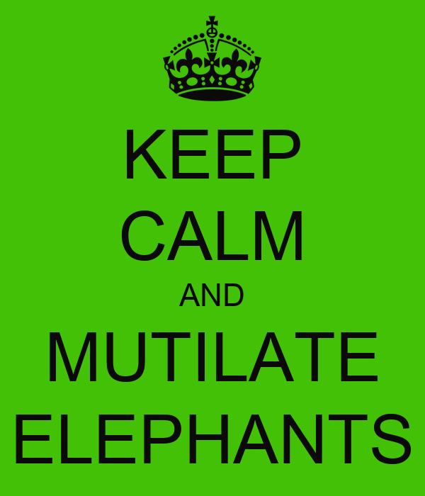 KEEP CALM AND MUTILATE ELEPHANTS
