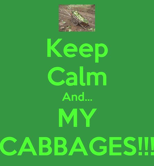Keep Calm And... MY CABBAGES!!!