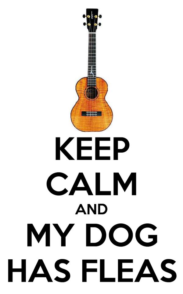 KEEP CALM AND MY DOG HAS FLEAS