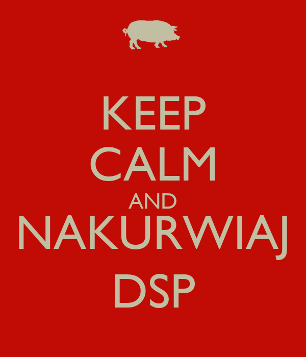 KEEP CALM AND NAKURWIAJ DSP