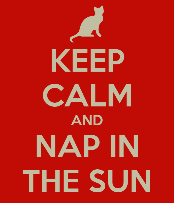 KEEP CALM AND NAP IN THE SUN