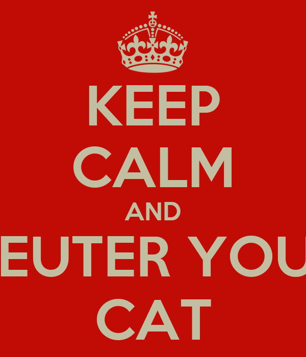 KEEP CALM AND NEUTER YOUR CAT