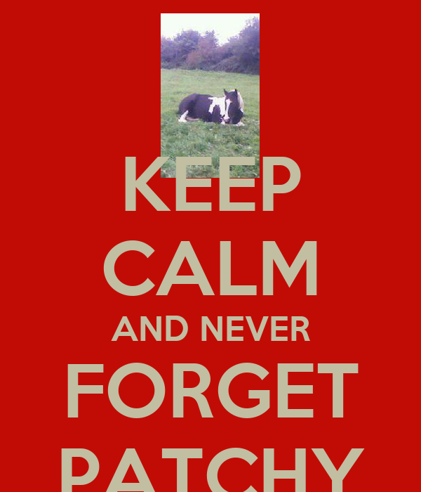 KEEP CALM AND NEVER FORGET PATCHY