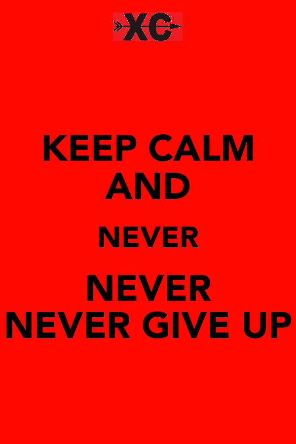 KEEP CALM AND NEVER NEVER NEVER GIVE UP