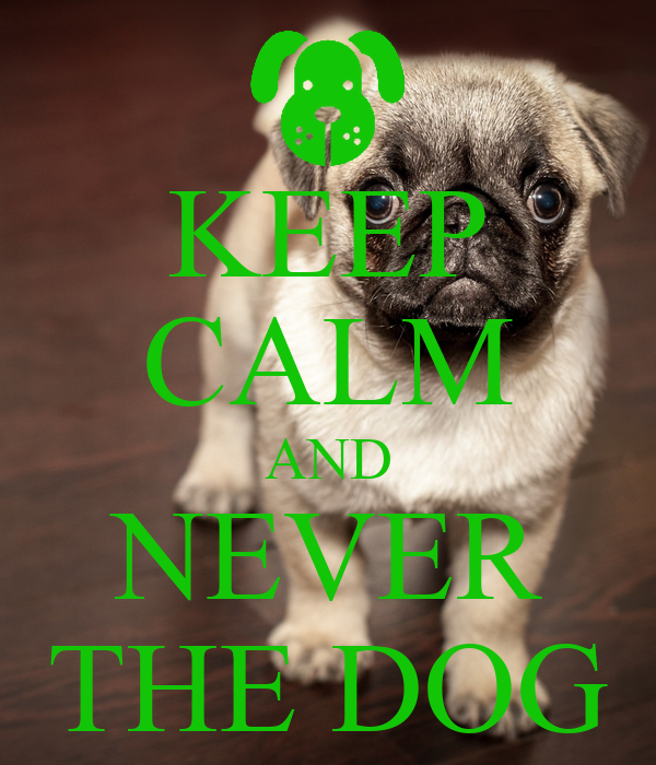 KEEP CALM AND NEVER THE DOG