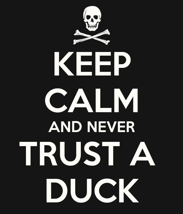 KEEP CALM AND NEVER TRUST A  DUCK
