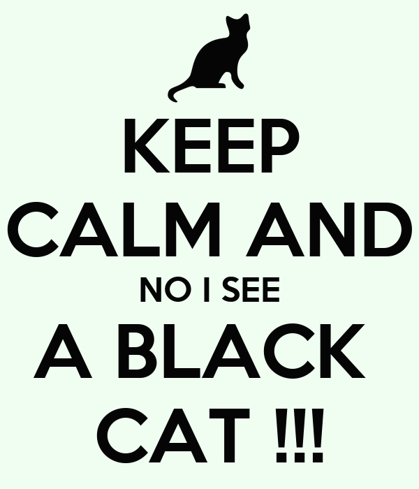 KEEP CALM AND NO I SEE A BLACK  CAT !!!