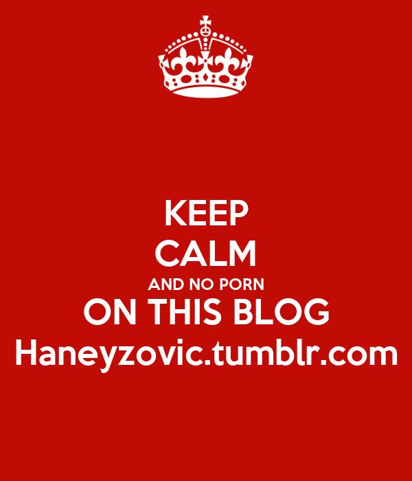 KEEP CALM AND NO PORN ON THIS BLOG Haneyzovic.tumblr.com