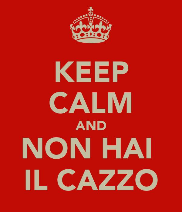 KEEP CALM AND NON HAI  IL CAZZO