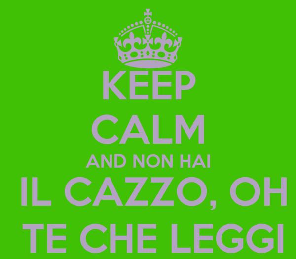 KEEP CALM AND NON HAI  IL CAZZO, OH  TE CHE LEGGI