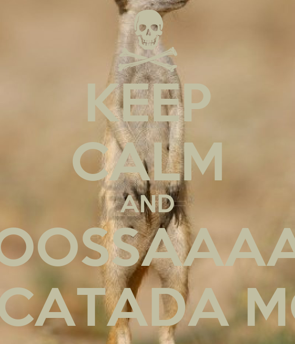 KEEP CALM AND NOOOOOSSAAAAAAAA QUE SURICATADA MONSTRA!!!