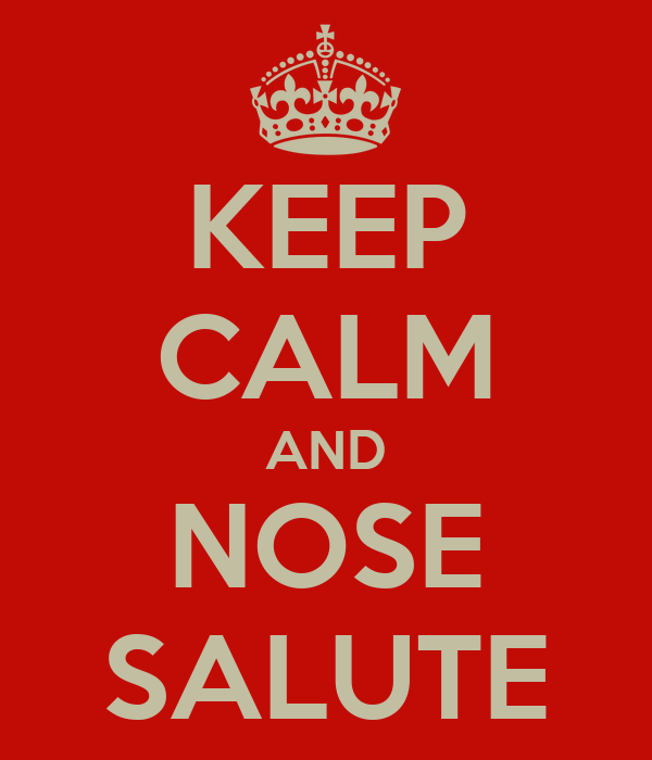 KEEP CALM AND NOSE SALUTE