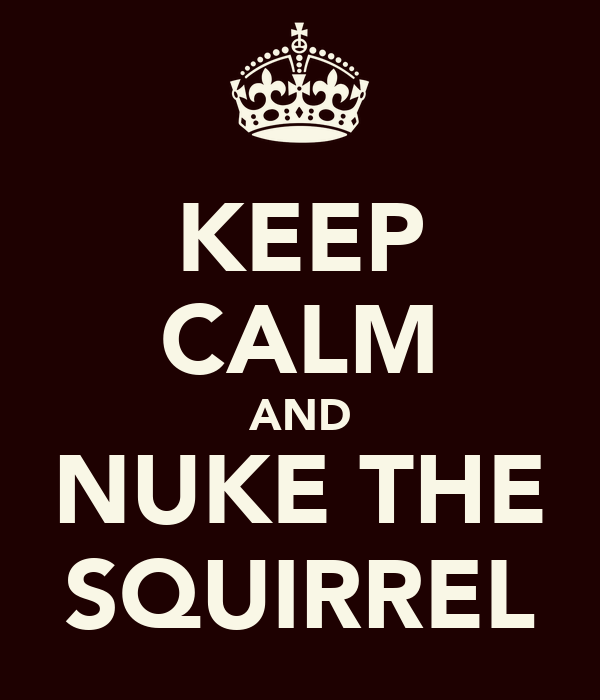 KEEP CALM AND NUKE THE SQUIRREL