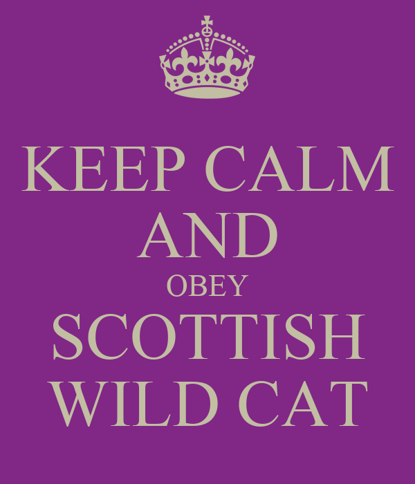 KEEP CALM AND OBEY SCOTTISH WILD CAT