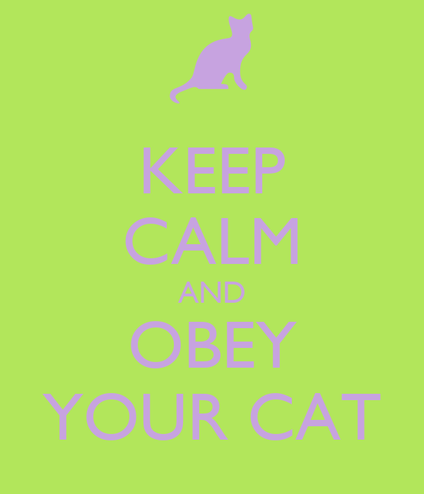 KEEP CALM AND OBEY YOUR CAT