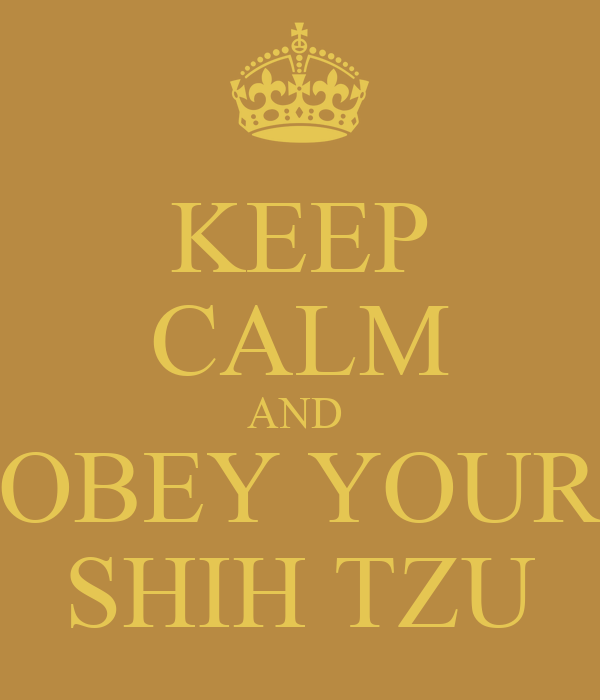 KEEP CALM AND  OBEY YOUR SHIH TZU