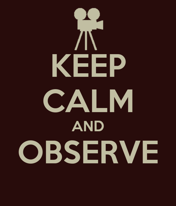 KEEP CALM AND OBSERVE