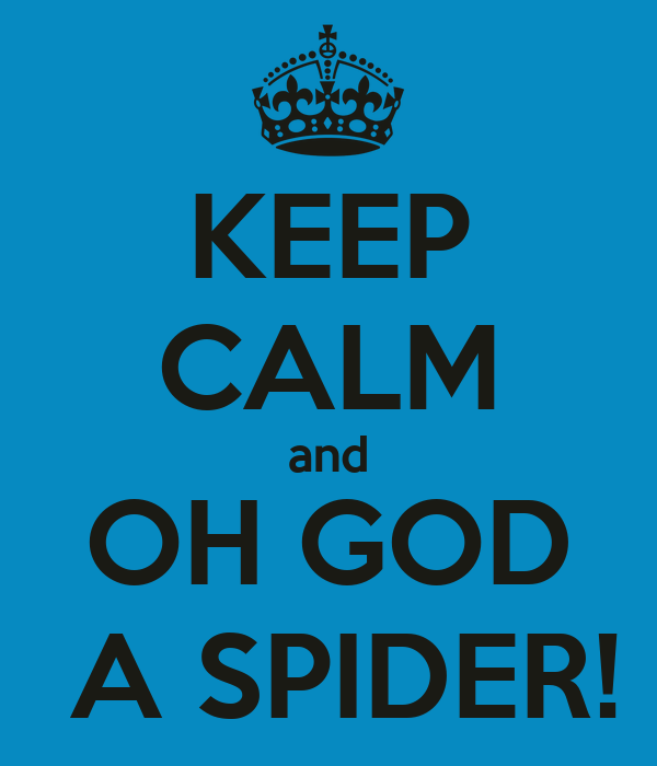 KEEP CALM and OH GOD  A SPIDER!