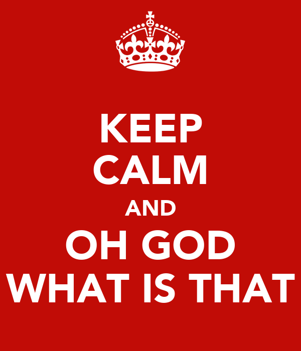KEEP CALM AND OH GOD WHAT IS THAT