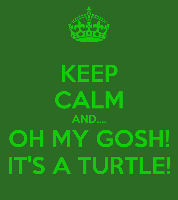 KEEP CALM AND.... OH MY GOSH! IT'S A TURTLE!