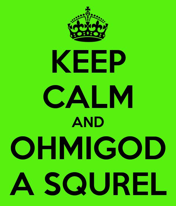KEEP CALM AND OHMIGOD A SQUREL