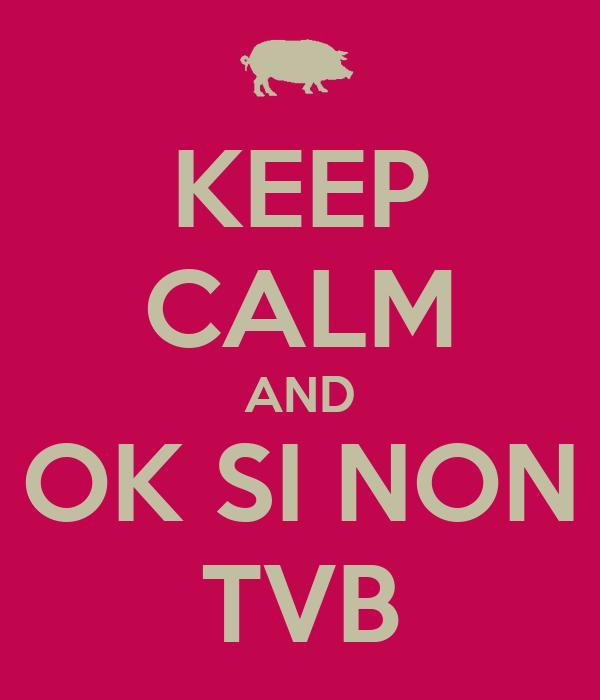 KEEP CALM AND OK SI NON TVB
