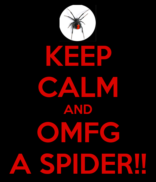 KEEP CALM AND OMFG A SPIDER!!