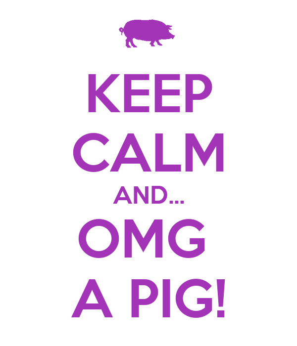 KEEP CALM AND... OMG  A PIG!