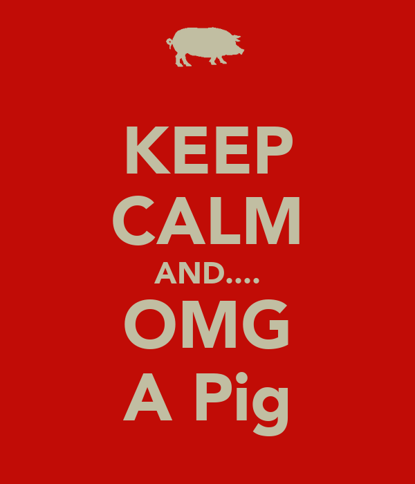KEEP CALM AND.... OMG A Pig