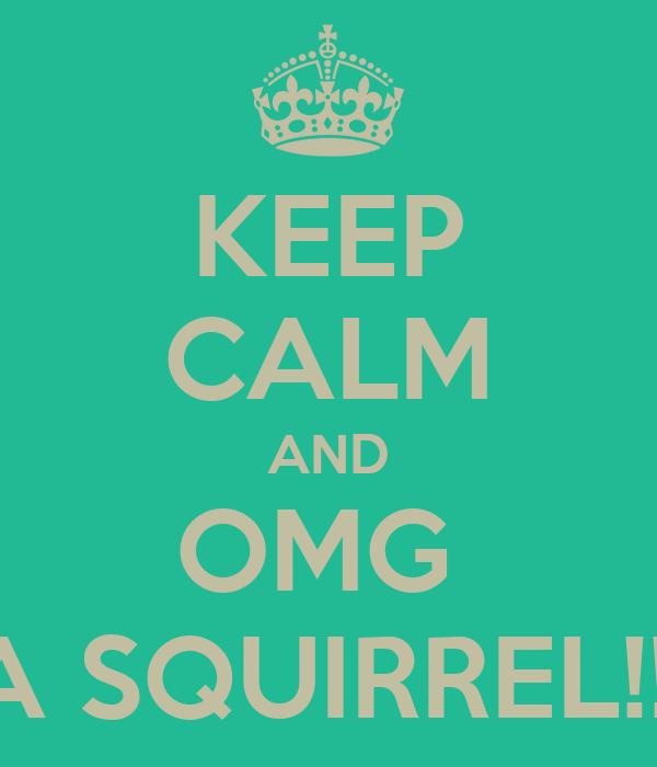 KEEP CALM AND OMG  A SQUIRREL!!!