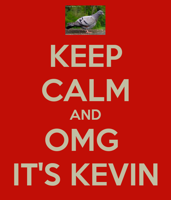 KEEP CALM AND OMG  IT'S KEVIN