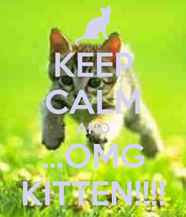 KEEP CALM AND ...OMG KITTEN!!!!