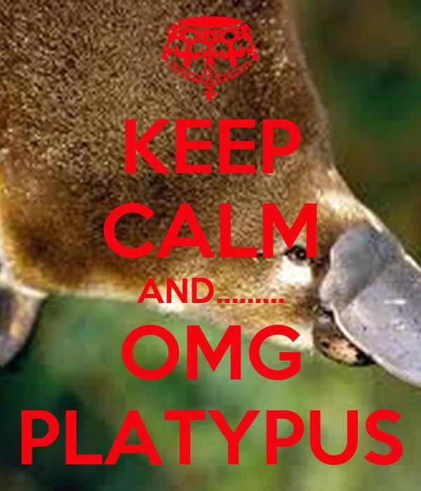 KEEP CALM AND......... OMG PLATYPUS