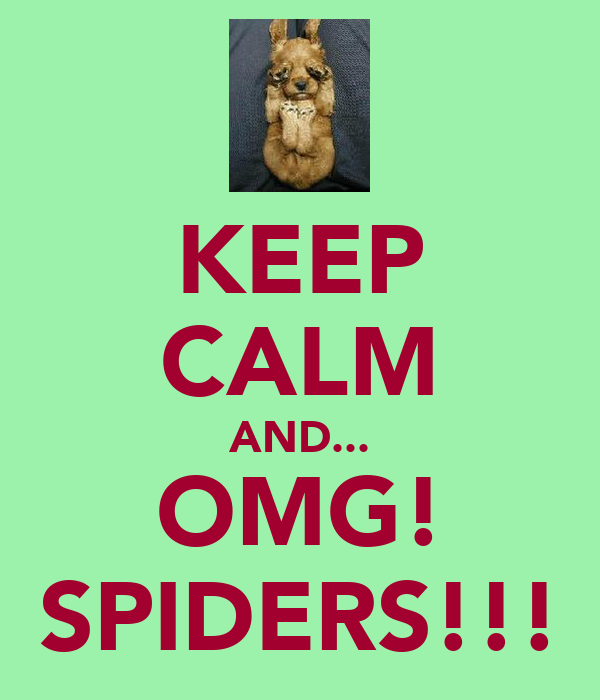 KEEP CALM AND... OMG! SPIDERS!!!