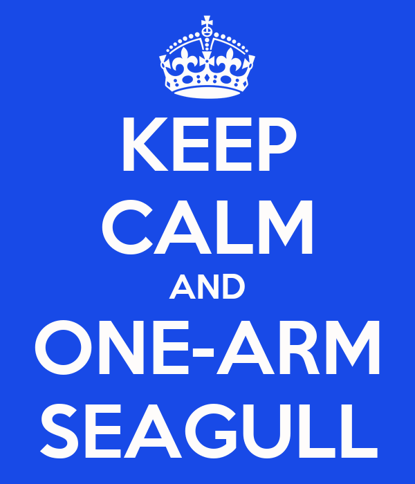KEEP CALM AND ONE-ARM SEAGULL