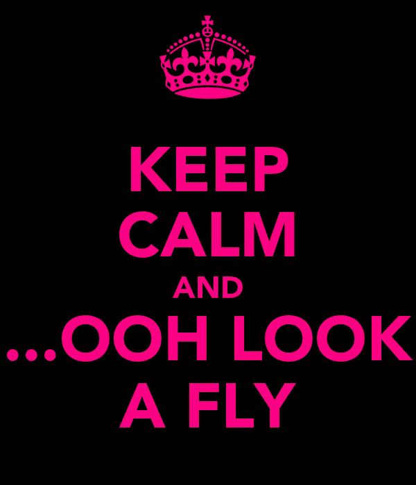KEEP CALM AND ...OOH LOOK A FLY