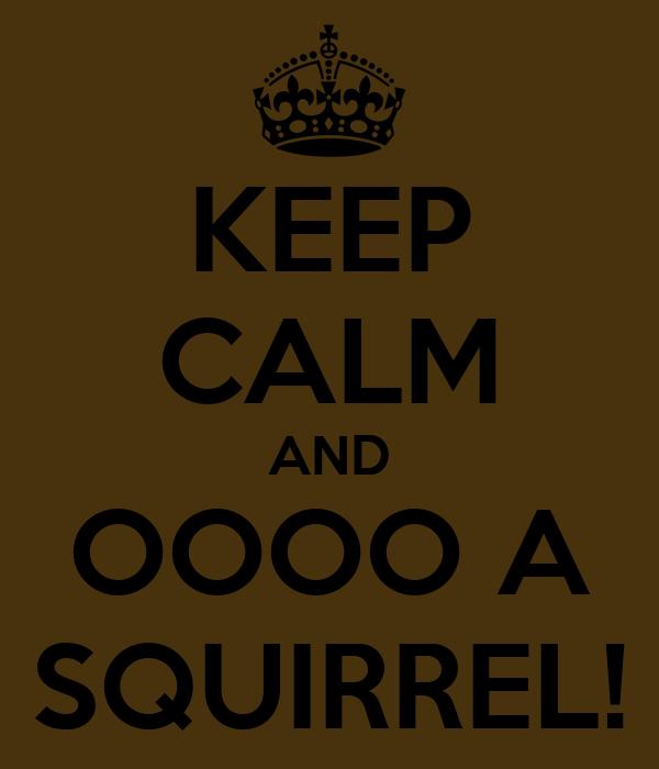 KEEP CALM AND OOOO A SQUIRREL!