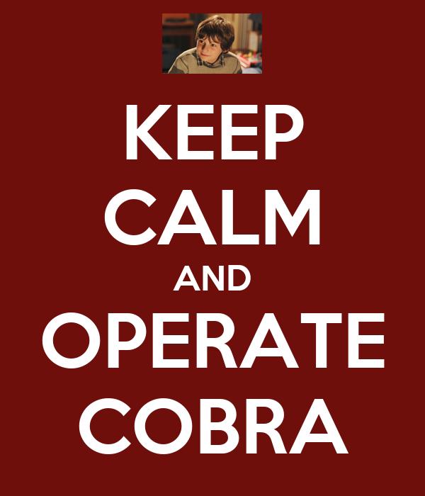 KEEP CALM AND OPERATE COBRA
