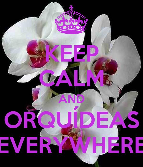 KEEP CALM AND ORQUÍDEAS EVERYWHERE