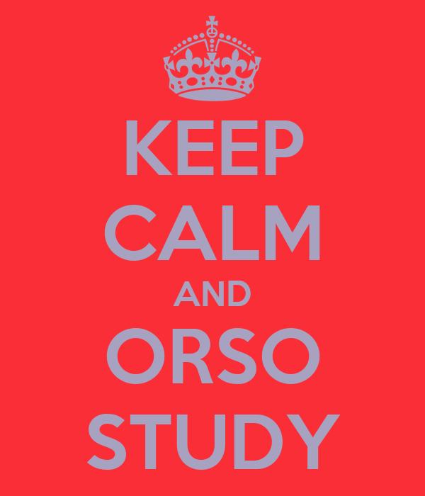 KEEP CALM AND ORSO STUDY