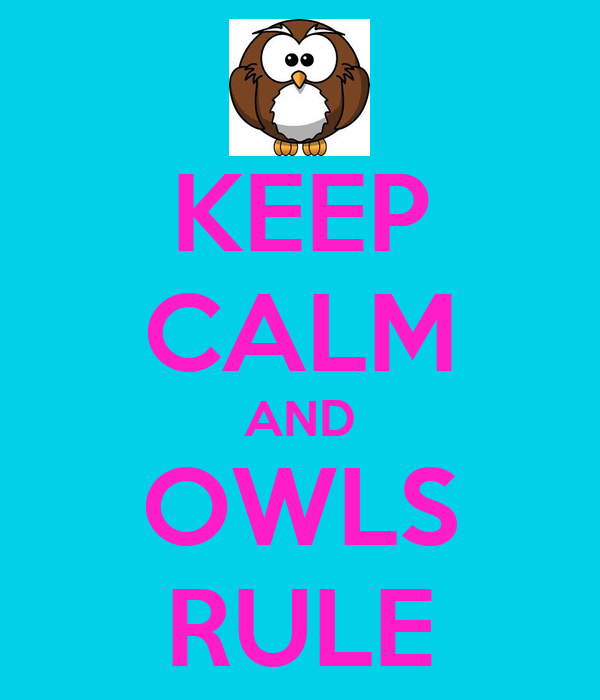 KEEP CALM AND OWLS RULE