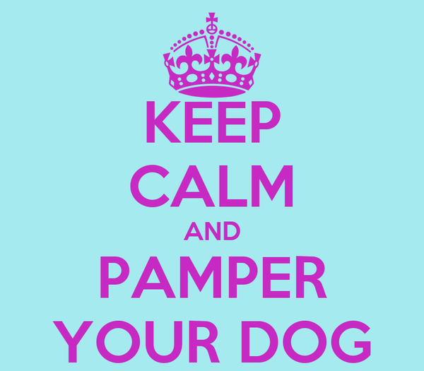 KEEP CALM AND PAMPER YOUR DOG